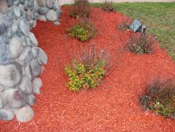 landscaping with red rocks
